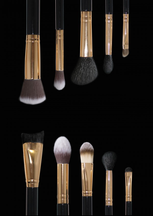 10 piece Ultimate Brush Collection